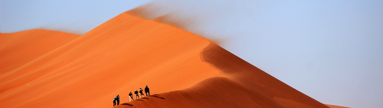 banner pagine interne dune